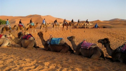 Camel ride in Sahara