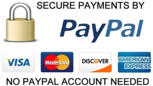 secure_payment_by_paypal